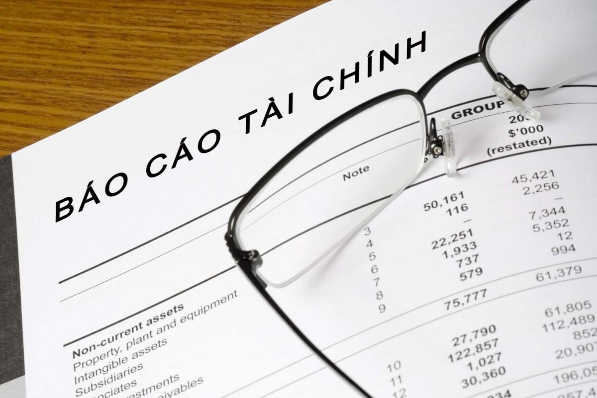 Báo cáo tài chính năm 2017 đã qua kiểm toán