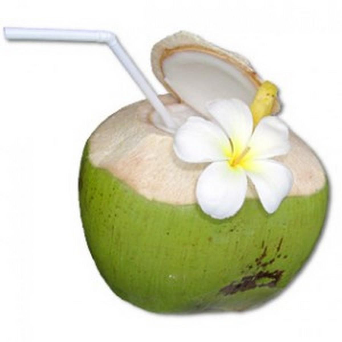 Nước dừa xuất khẩu